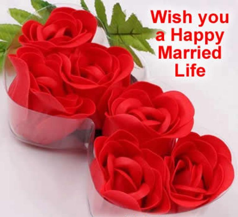 Create Happy Married Life Wishes Make Wish